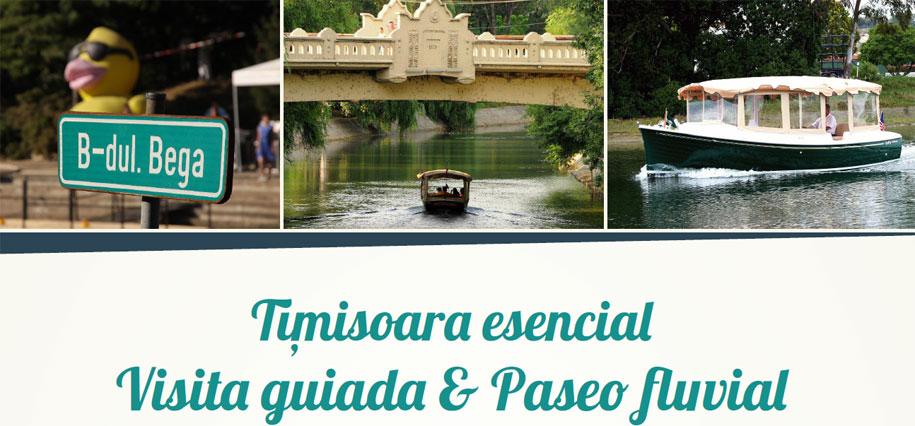 Actividades en Timisoara